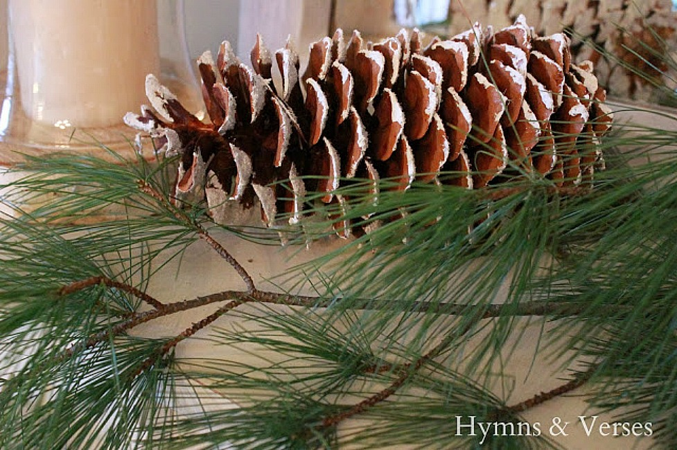 Cozy Winter Home - Pine Cone