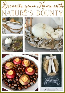 Decorate your Home with Nature's Bounty