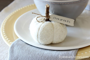 Felted Wool Pumpkin Place Cards