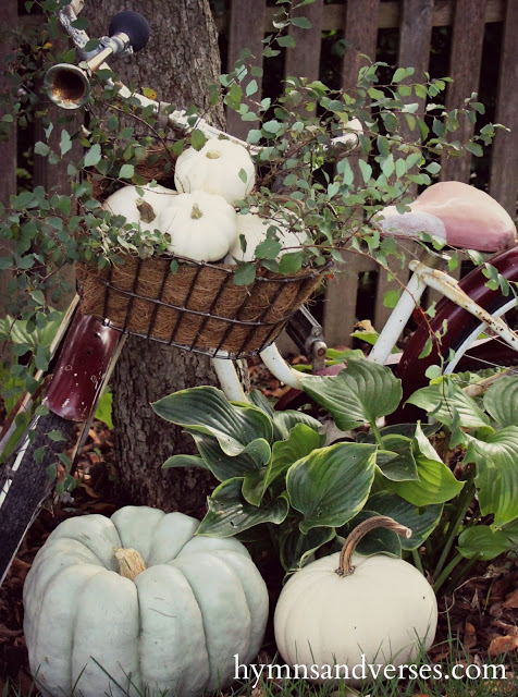 Fall Pumpkins with Vintage Schwinn