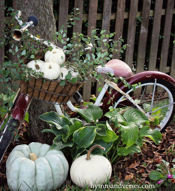 Fall Pumpkins - Vintage Bicycle