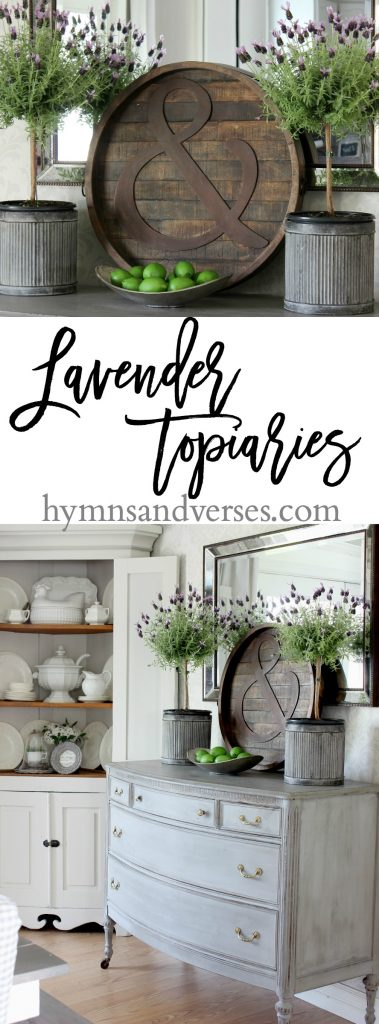 lavender topiaries