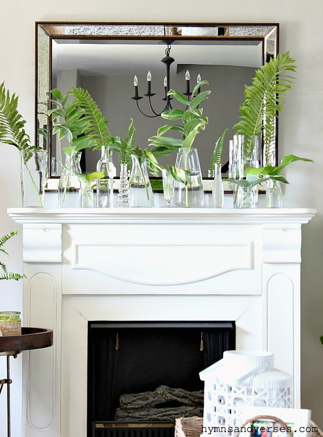 Spring Botanical Mantel Decor with Plant Cuttings in Glass Vases