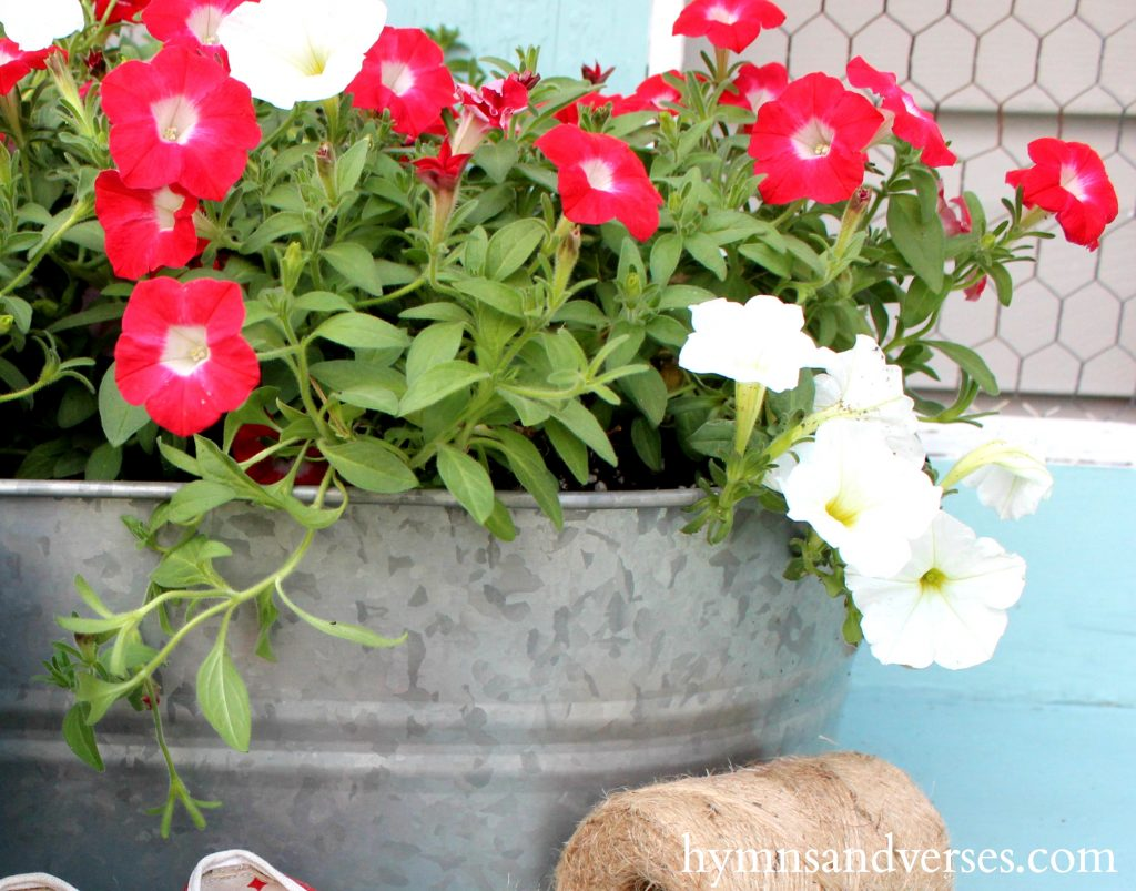 RCottage Farmhouse Garden Ideas - Red, White & Aqua Blue Potting Benche - Petunias