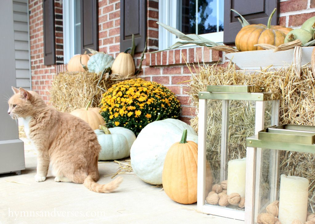 Fall Front Porch - Cat