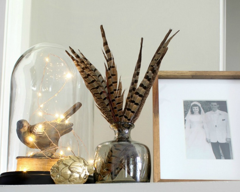 Fall Home - Pheasant feathers