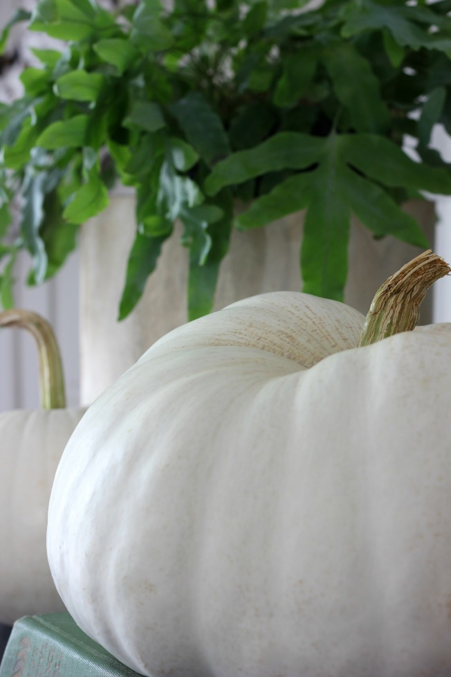Fall Home - White Pumpkins