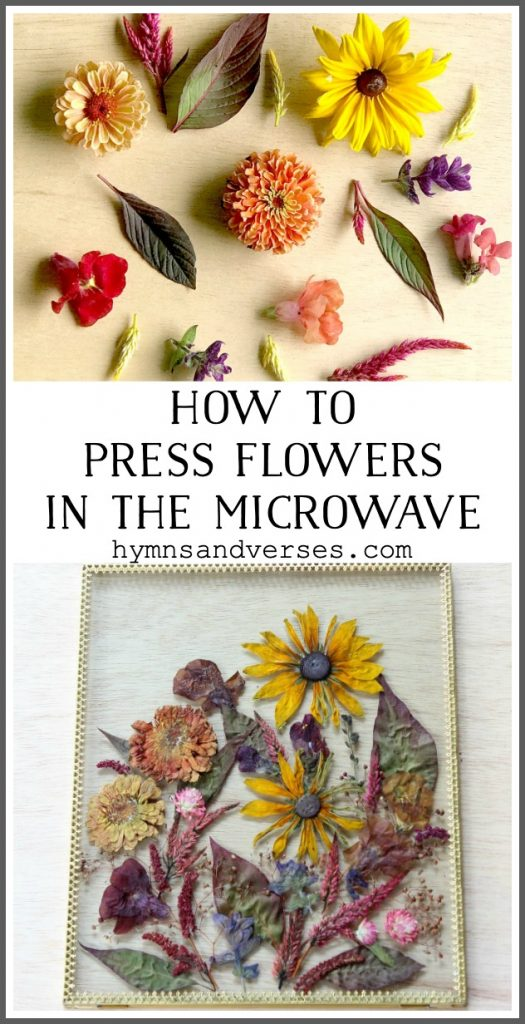 How to Press Flowers in the Microwave